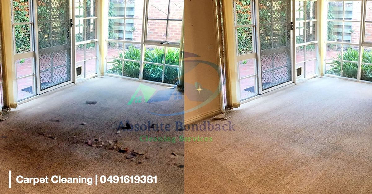 carpet-cleaning-0001